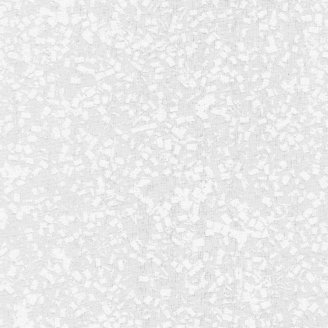Интро белый 0225