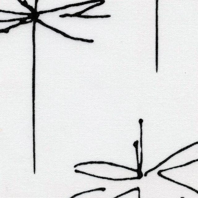 Стрекоза белый 0225