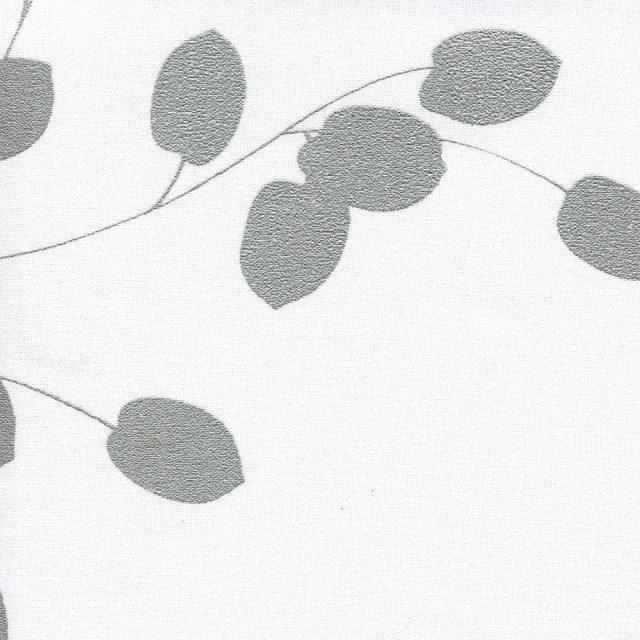 Аллея белый 0225