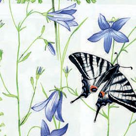 Флора белый 0225